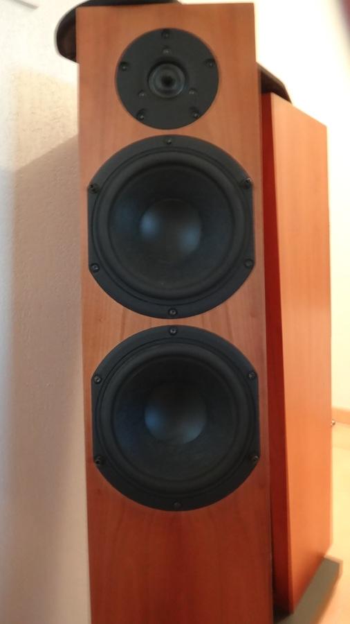 Audio Physic Tempo 3i image (#506318)