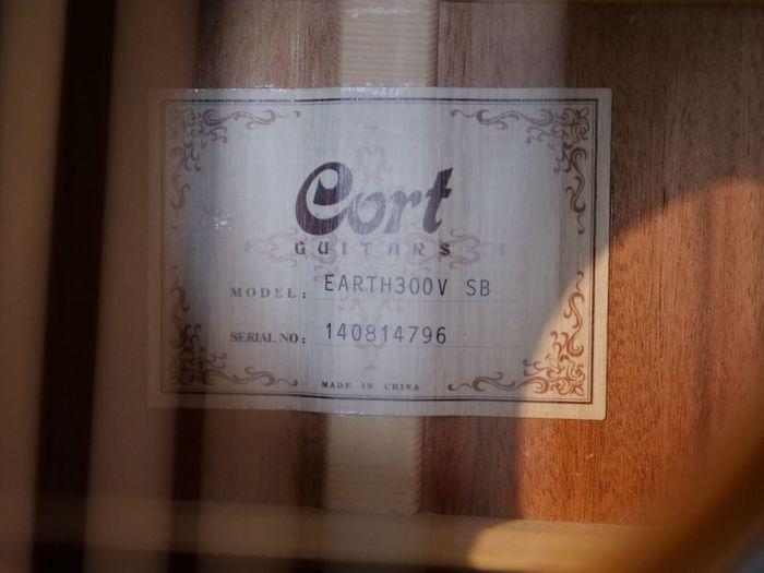 Cort Earth300V