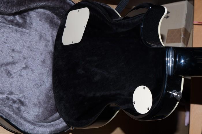 Epiphone Les Paul Standard (86467)