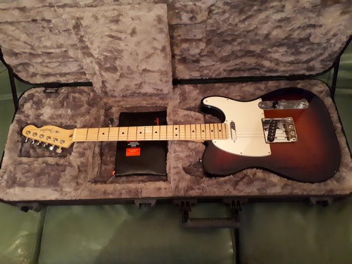 Fender Fender Am Pro Mn 3TS (53197)