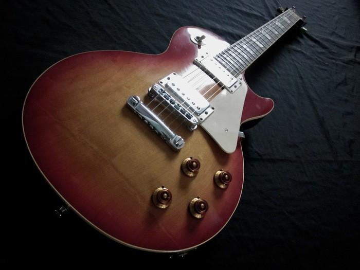 Gibson Les Paul Standard (77107)