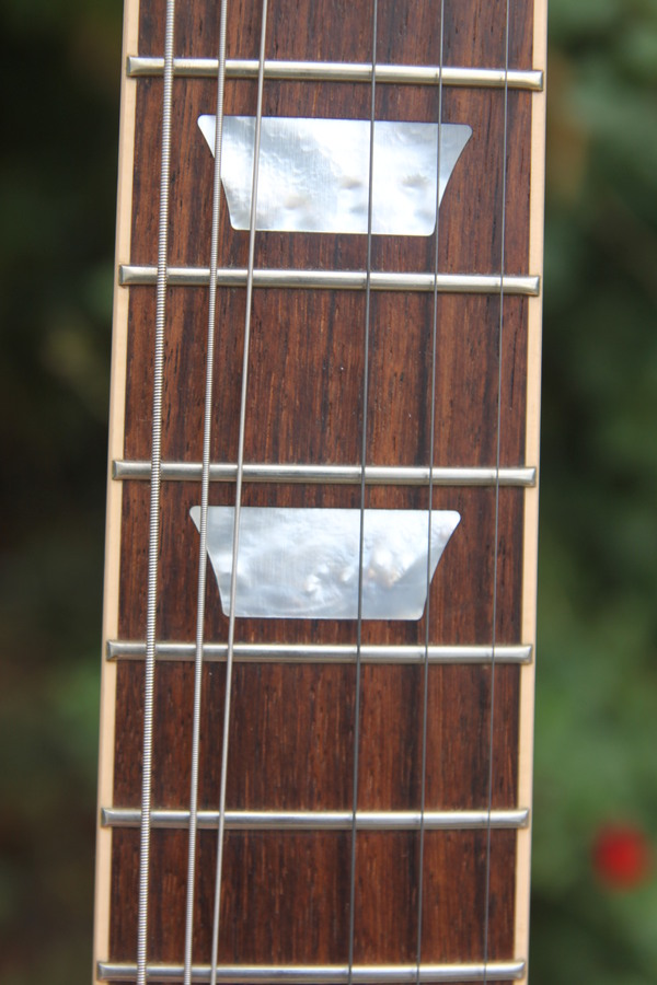 Gibson Les Paul Traditional Sam Guitares images
