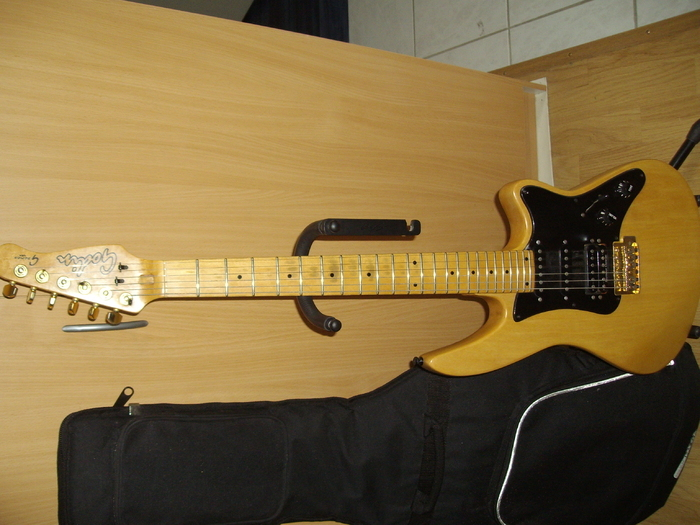 Godin G-1000 Anonymous  images