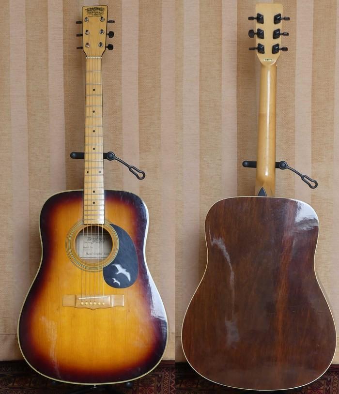 https://medias.audiofanzine.com/images/thumbs3/guitares-acoustiques-dreadnoughts-3044716.jpg