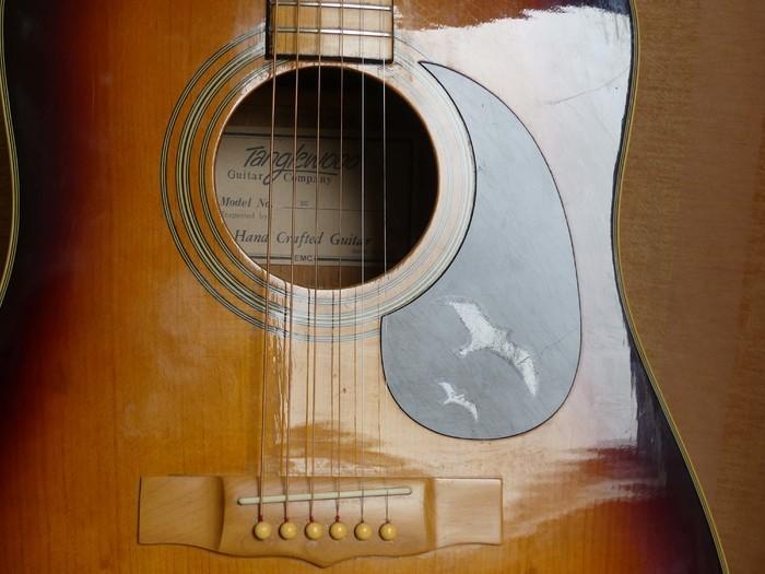 https://medias.audiofanzine.com/images/thumbs3/guitares-acoustiques-dreadnoughts-3044718.jpg