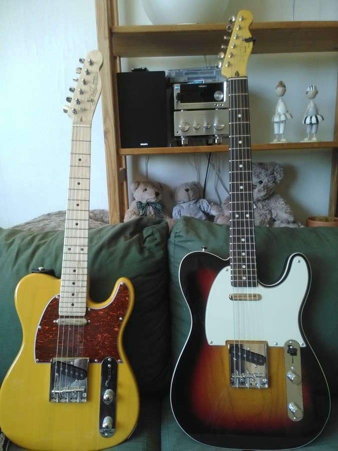 https://medias.audiofanzine.com/images/thumbs3/guitares-de-forme-tc-3050272.jpg