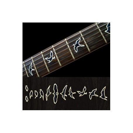 https://medias.audiofanzine.com/images/thumbs3/guitares-electriques-solid-body-3028516.jpg