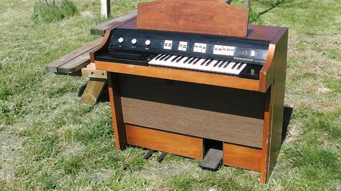 Hammond Chord Organ Everett Series Model 2022 (81808)