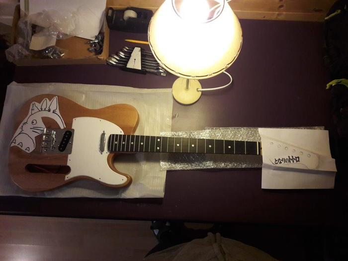 Kit T Style Personnalise Forum Harley Benton Electric Guitar Kit T