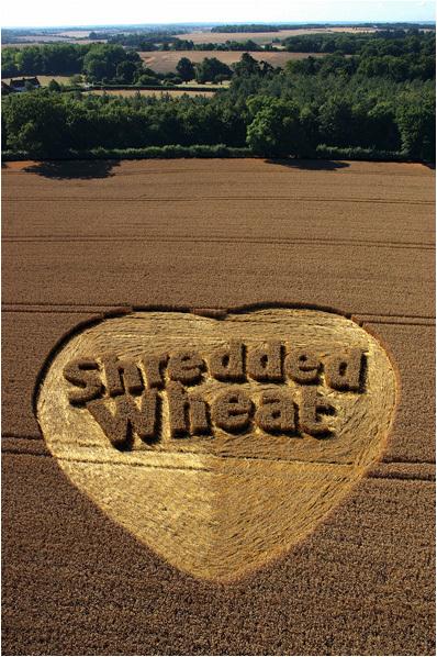 Shredded Wheat 06