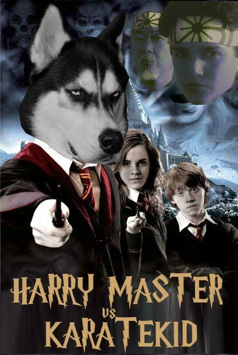 harry potter 5 collage i1406