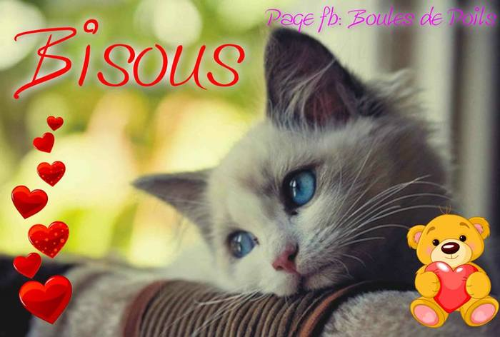 bisous 019