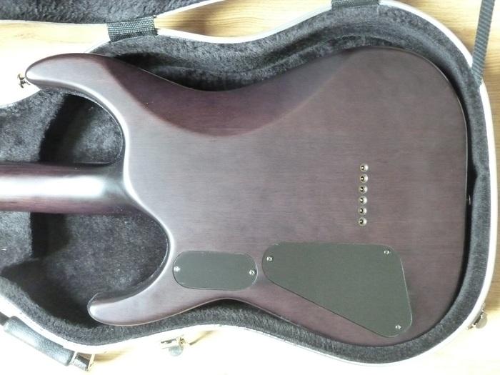 test guitare esp ltd jon donais le hangar des guitares. Black Bedroom Furniture Sets. Home Design Ideas