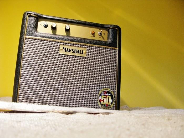 Marshall 1960s JTM1C (25824)