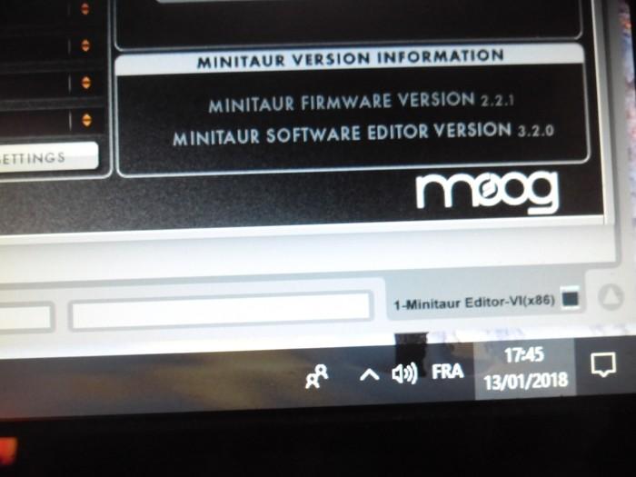 Moog Music Minitaur (11509)