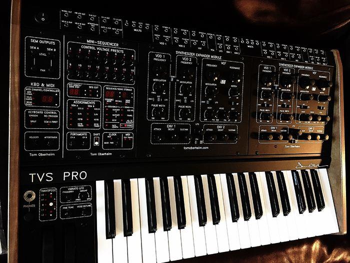 Oberheim Two Voice Pro (96478)