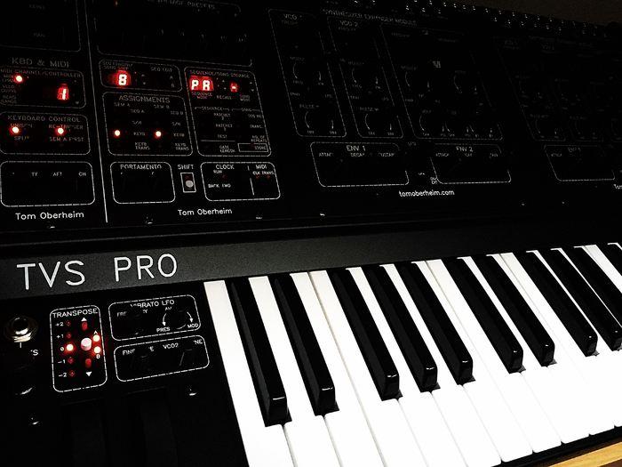 Oberheim Two Voice Pro (53464)