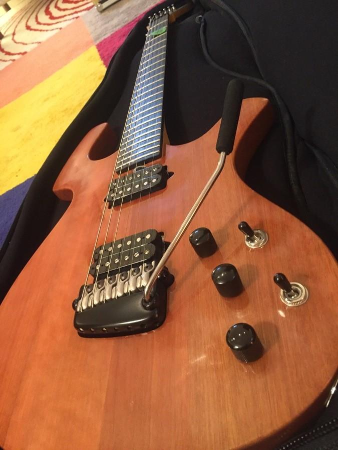 Parker Guitars P-44V (92209)