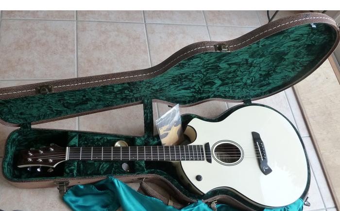 Parker Guitars P6E macjmh images