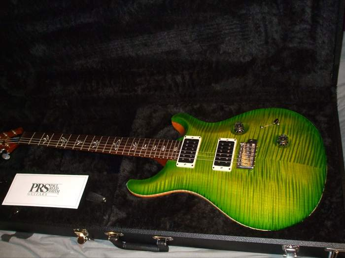PRS Custom 24 Ten Top Birds (89810)