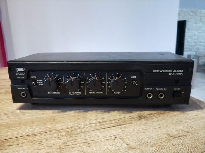 Roland RV 100 (21212)