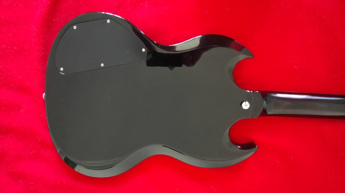 SR Guitars SRSG Origin - Ebony BigBadPete images