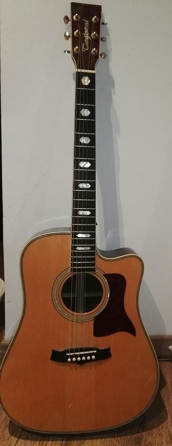 Tanglewood TW1000 H SRC E (16720)