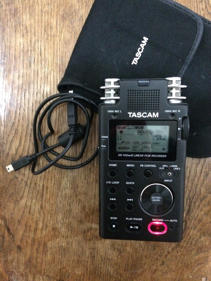 Tascam DR-100MKII (56219)