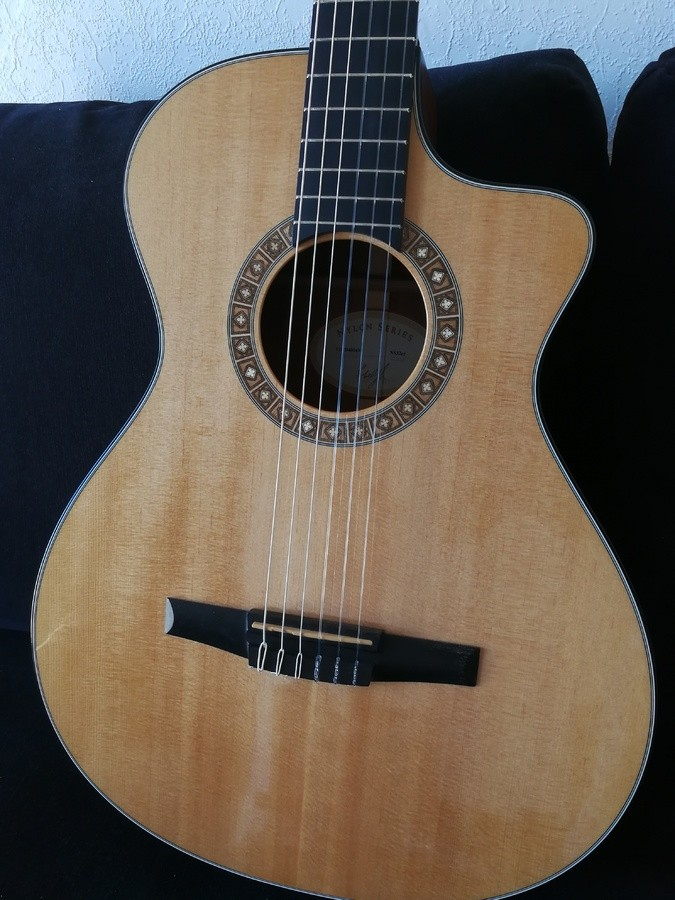 Taylor NS32ce (58139)