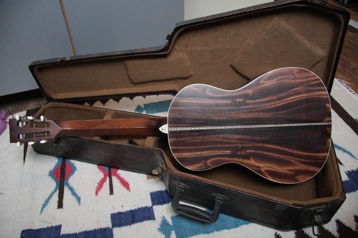 Washburn R319SWK (48603)