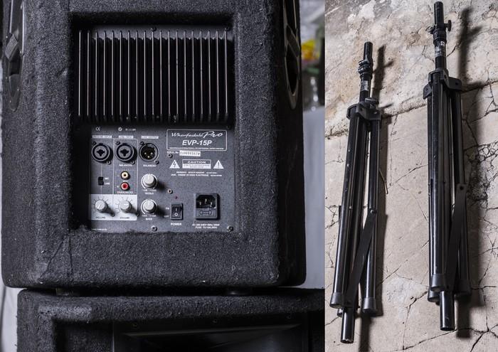 Wharfedale EVP-15P (2746)