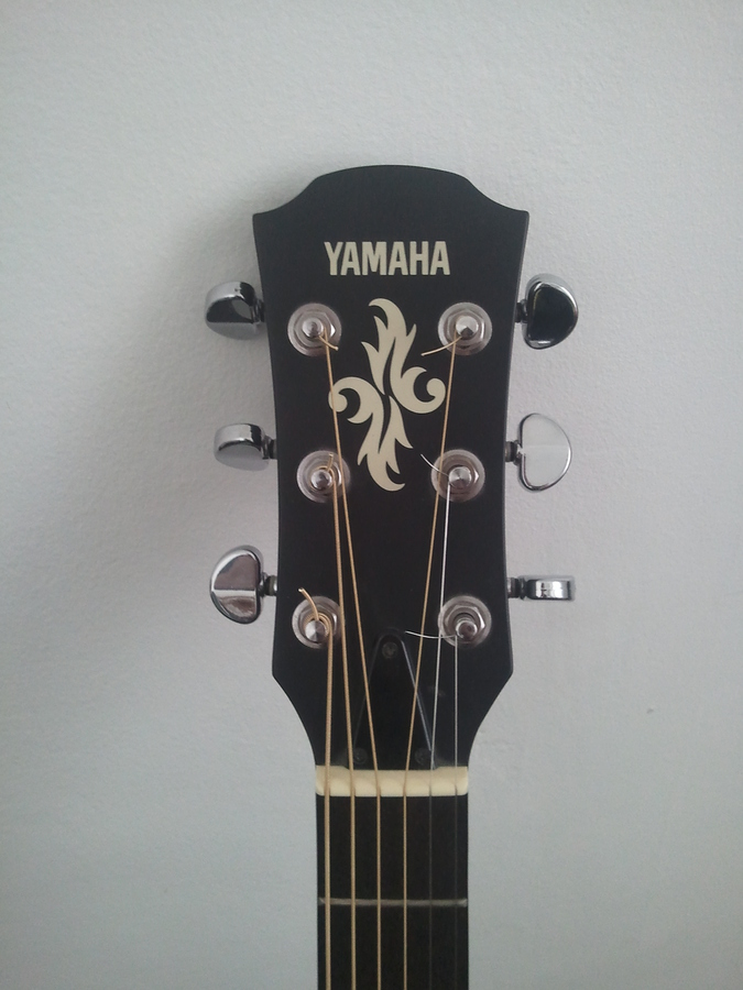 Photo yamaha apx5a yamaha apx series apx5a 450371 for Yamaha apx series