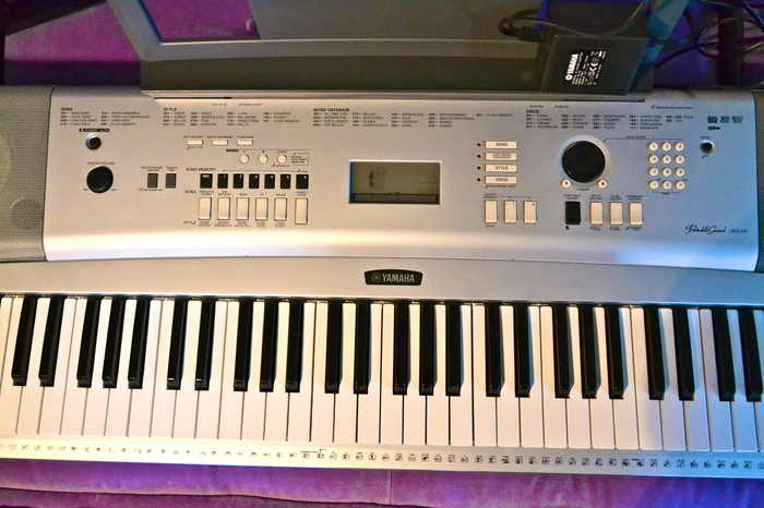 yamaha dgx 230 manual english gfgett