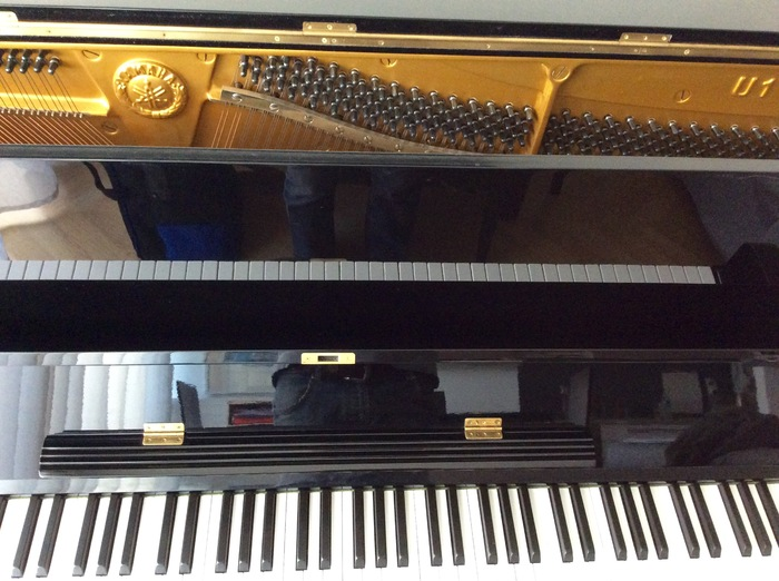 Yamaha U1 mattmar images