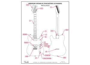 Parts & Wiring Diagram