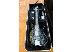 Parker Guitars PDF100