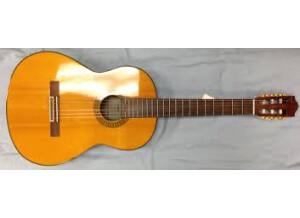 Yamaha C80