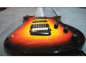 Parker Guitars DF724