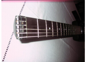 Steinberger GM4AT