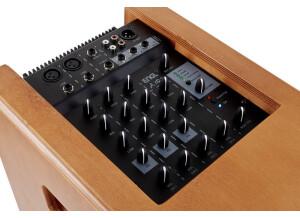 ENGL A101 Acoustic Amp
