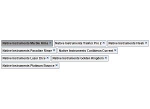 Native Instruments Flesh