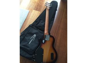 Traveler Guitar EG-1 Standard (39714)