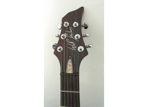 Wolf Guitars WE2