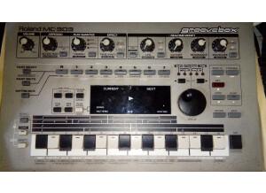 Roland SP-808EX (73661)