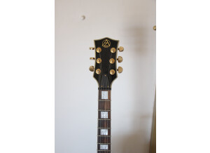 WSL Guitars AZ series Les Paul Type