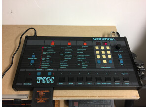 Sequential Circuits TOM (39544)