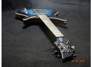 Wolf Guitars WE3