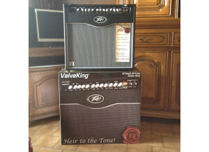 Peavey ValveKing Combo 20