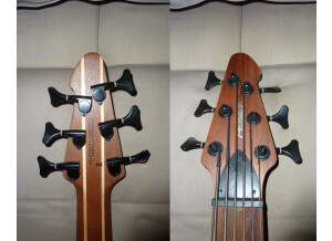 Peavey Grind Bass 6
