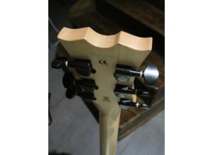 Dean Guitars Evo XM